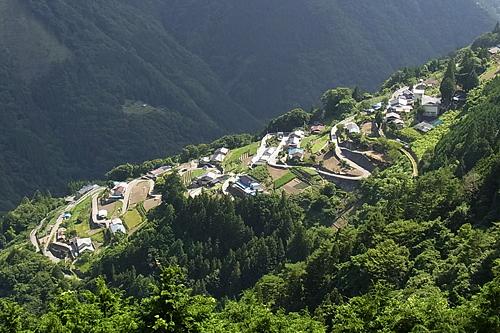 Shimoguri.jpg