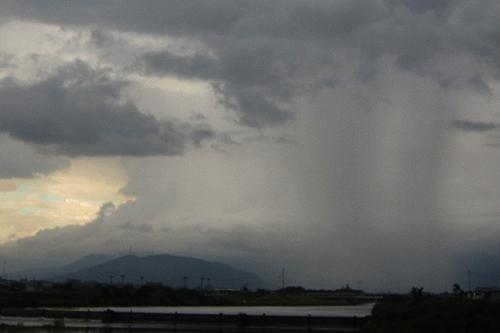 Rain-Piller.jpg